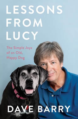 lessons-from-lucy-home-380t.jpg